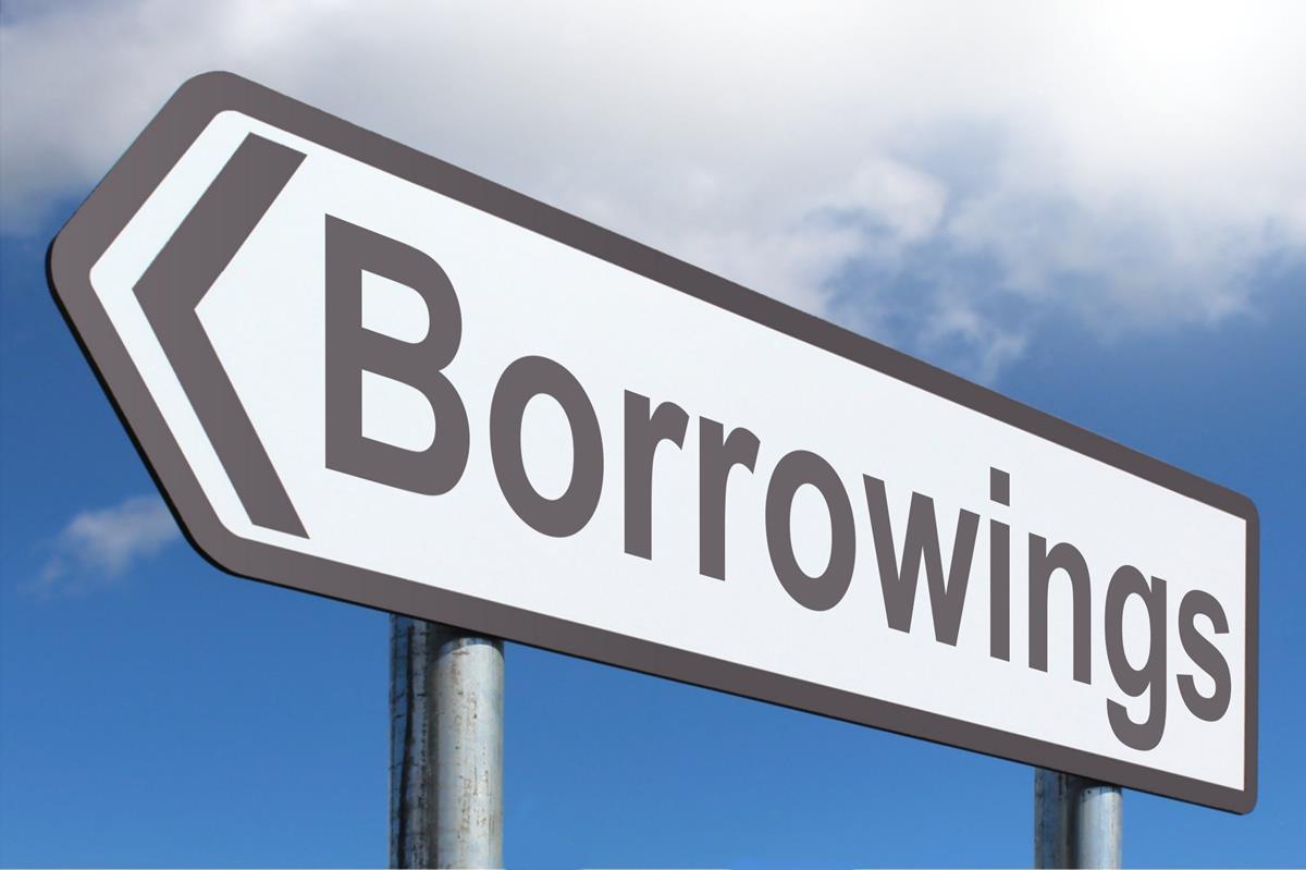 Borrowings